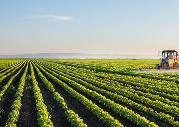 Agricultural <br>Land