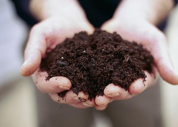 Compost <br>Production
