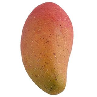 Fagr Kilam Mango