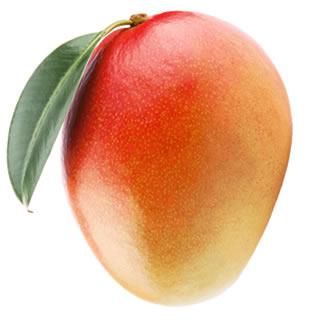 Teymour Mango
