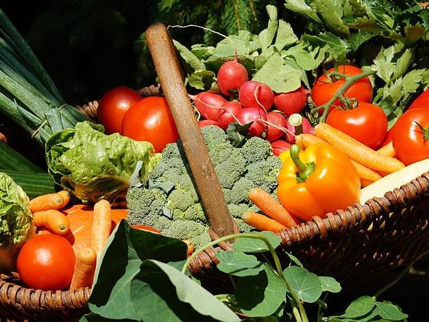 Vegetables Production